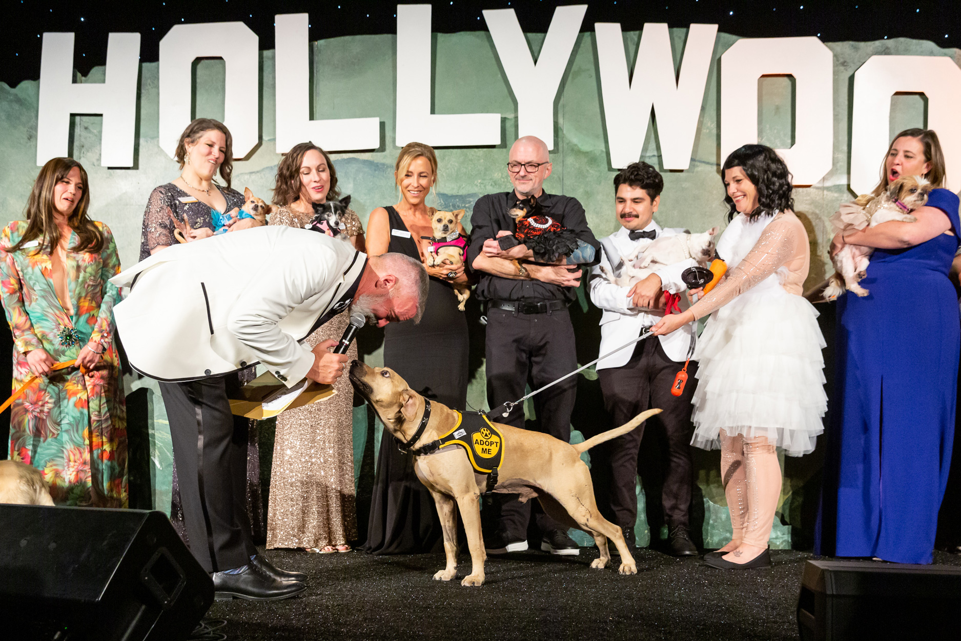 The Golden Age of Hollywoof