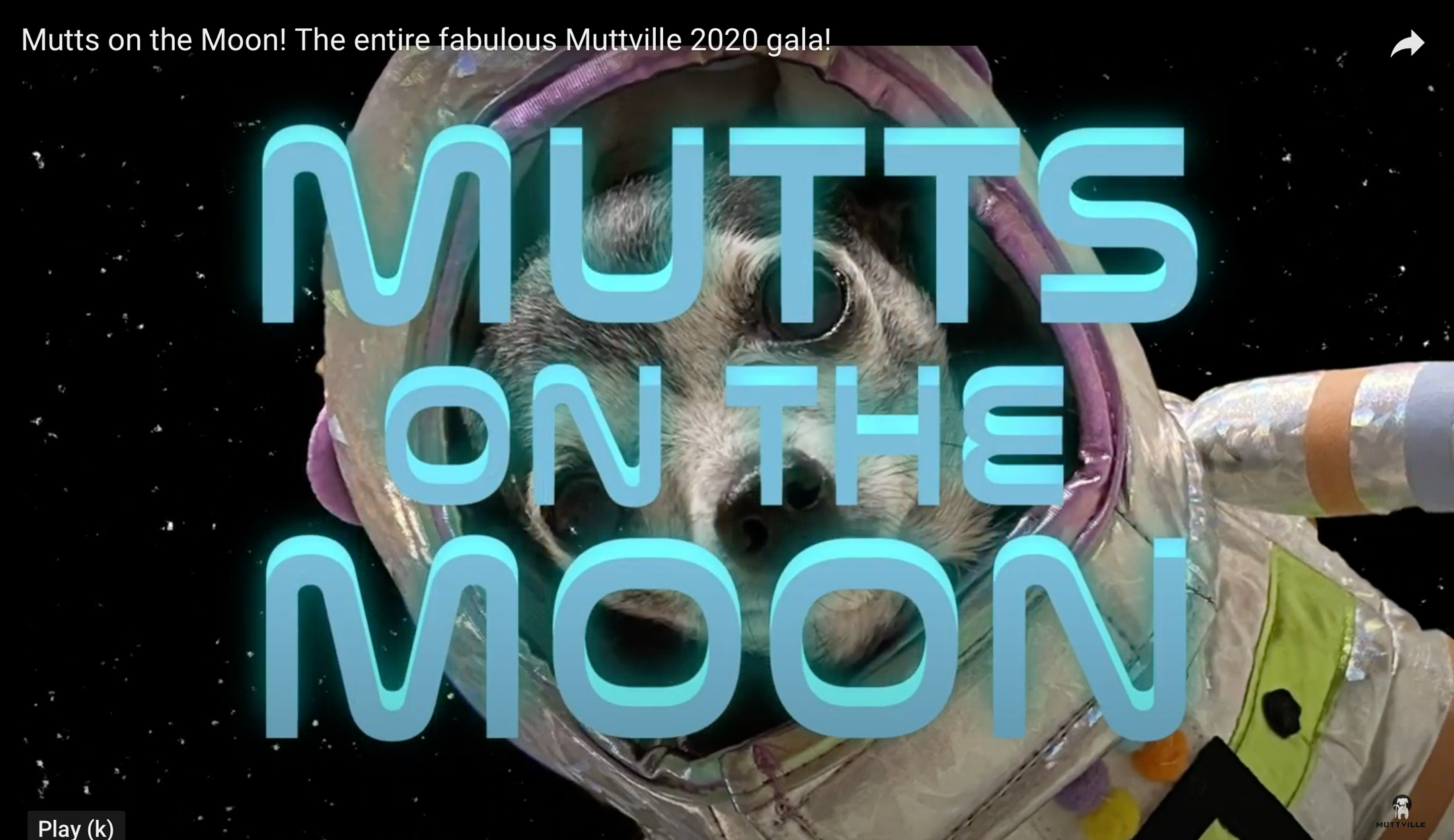 Mutts on the Moon