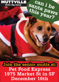 Come visit Santa Paws at the Pet Food Express on Market St!!!