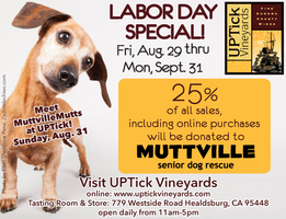 Meet Our Mutts at UPTick Vineyards in Wine Country!