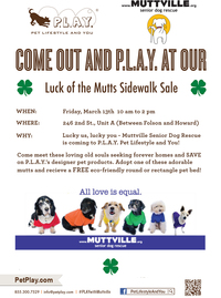 Muttville & P.L.A.Y. Sidewalk Sale and Adoption Event