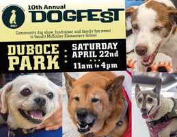 Muttfest at Dogfest