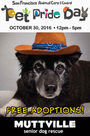 Howl-o-ween Adoptathon - Pet Pride Day edition