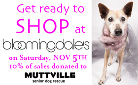 Muttville Shopping Day at Bloomingdale's San Francisco Centre