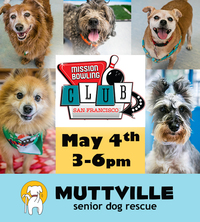 Yappy Hour at Mission Bowling Club