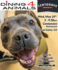 Dining 4 Animals in support of Muttville