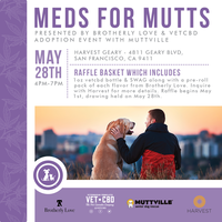 Meds for Mutts