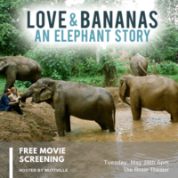 Love & Bananas Free Screening
