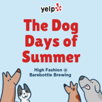 The Dog Days of Summer - High Fashion at Barebottle Brewing