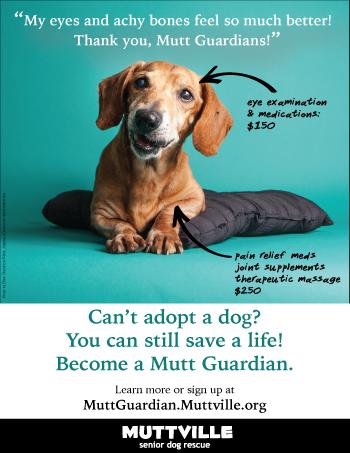 Become a Mutt Guardian